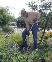 Old Marengo Park Clean-Up and Beautification
