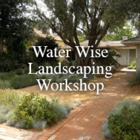Water Wise Landscaping Workshop