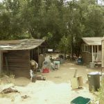 7-backshedview