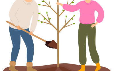 Online Tree Worksop Three