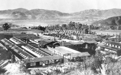 A Short History of  La Viña